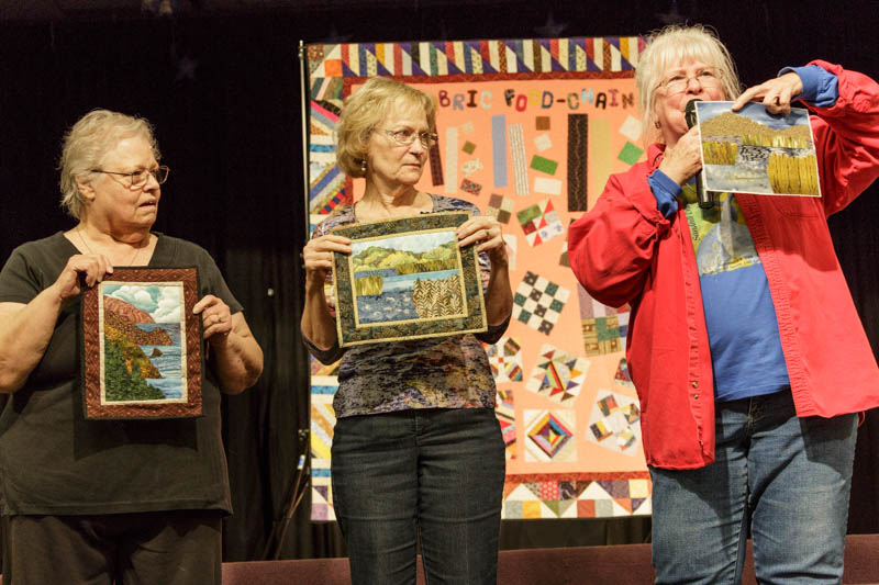20141013quilt-meeting-canon-eos-5d-mark-iiief28-300mm-f-3-5-5-6l-is-usm0158-74_0
